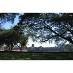 Angkor Wat 1 (panoramic view)