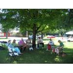 dulcimers in the park 1